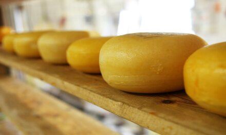 Los 5 quesos más raros del mundo