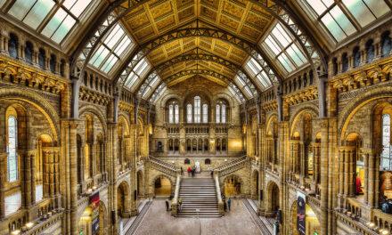 5 Increíbles Museos Gratuitos en Londres