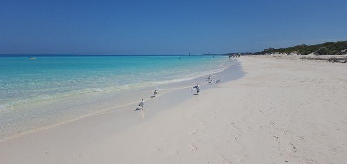 Playas del Este (La Habana) | Playas de Cuba
