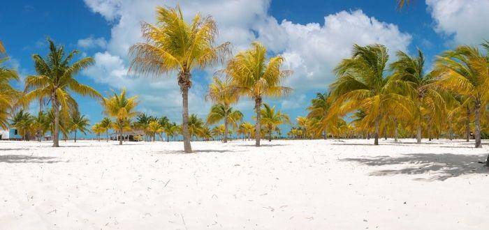 Playa Sirena y Playa Paraíso (Cayo Largo del Sur)