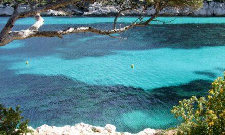 Las Calanques, un paraíso mediterráneo