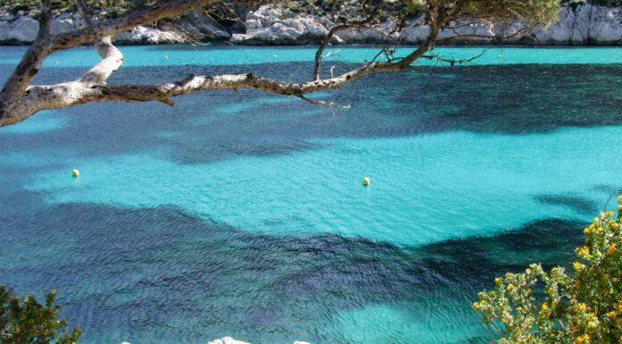 Las Calanques, un paraíso en el Mediterráneo