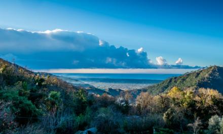 Isla Gorgona, tesoro Colombiano
