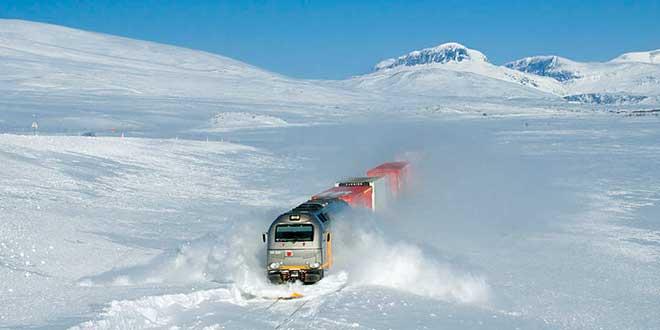 Tren-del-Norte