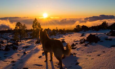 Las mejores puestas de sol del mundo (I)