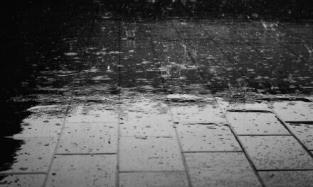 ¡Que la lluvia no te pare!