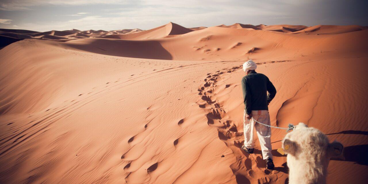 Los desiertos más increíbles del mundo (I)