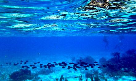 El Gran Agujero Azul, el ojo del mar
