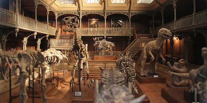 Reproducción museo prehistoria