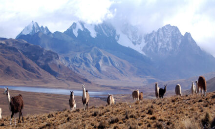 5 destinos low cost en América Latina