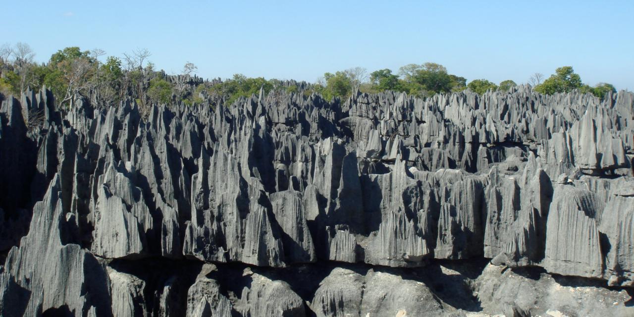 El increíble «Bosque de Piedra» de Madagascar