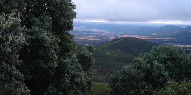 Monte de Toledo