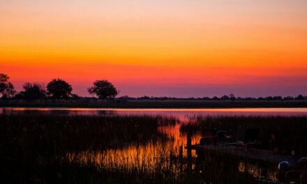 El delta de Okavango, el último Edén de África