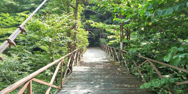 4 lugares escalofriantes en Japón