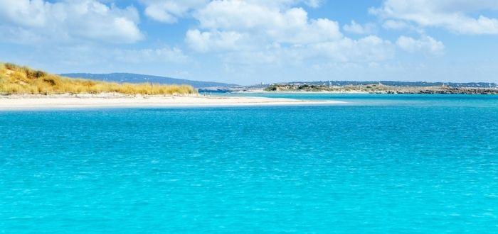 Isla de Espamaldor | Que ver en Formentera