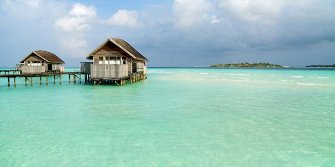 1cocoa island