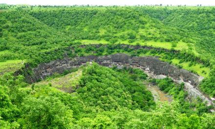 Ajanta, el secreto de la jungla