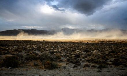 El desierto de Black Rock