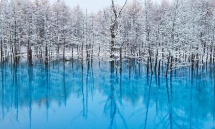 El Estanque Azul, una maravilla japonesa