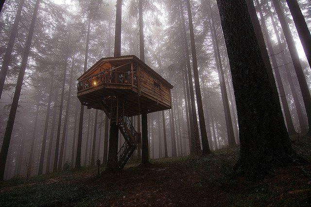 Hayedo de otzarreta el bosque encantado el viajero feliz - Casa arbol zeanuri ...