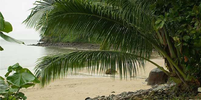 Isla-del-Coco