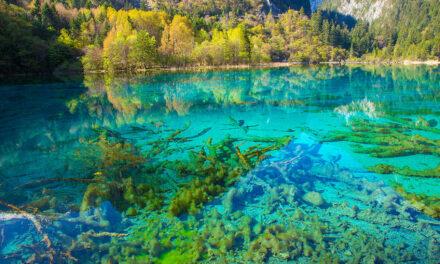 Jiuzhaigou, misterio y natura unidos