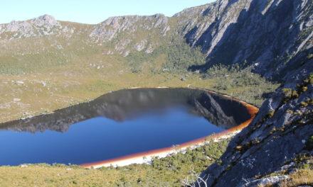Colores inimaginables en el lago Rhona