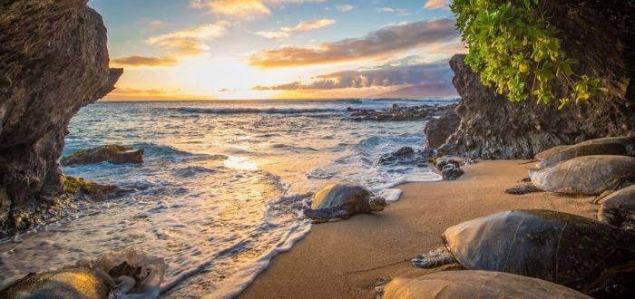 Maui, Hawái | Lugares para luna de miel