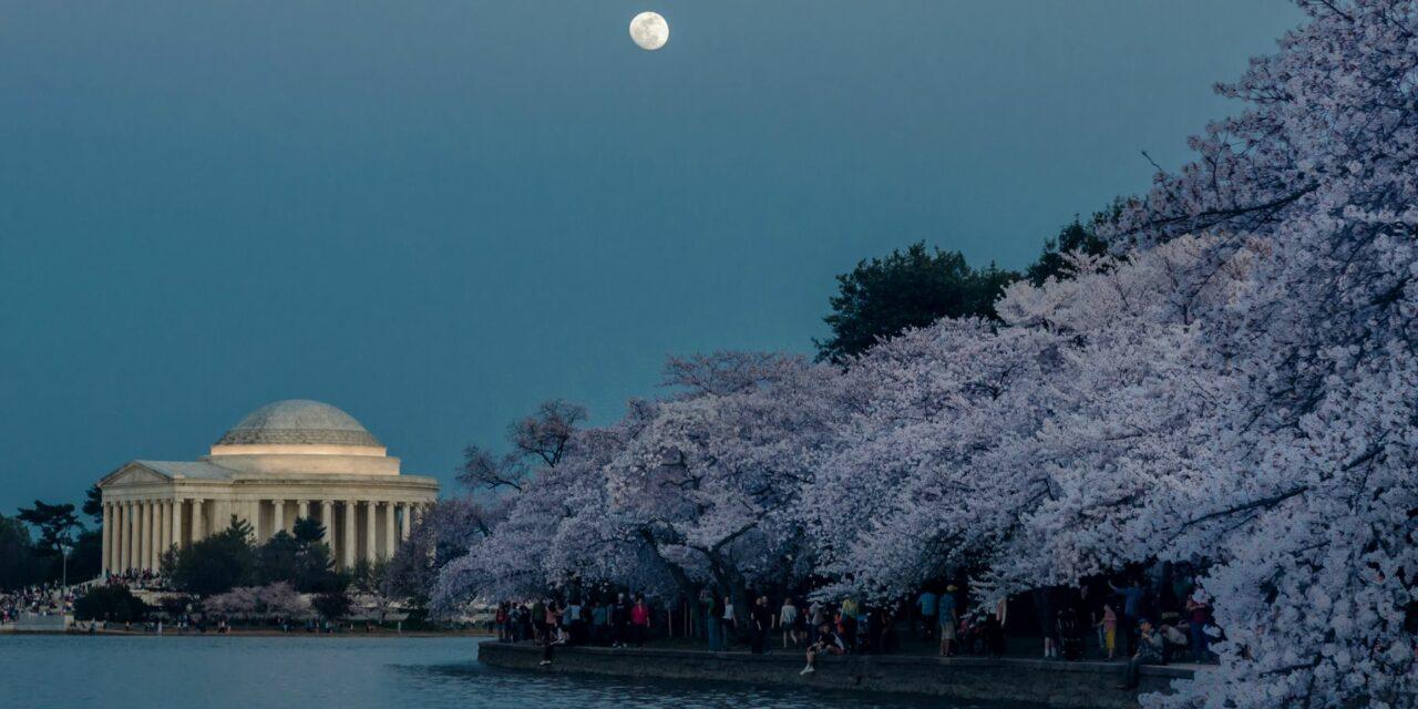 Qué hacer en Washington en un día (II)