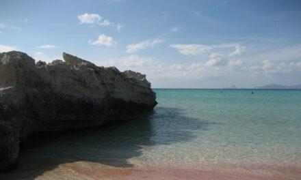 Playa de Illetes, disfruta del paraíso
