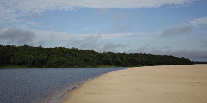 Islas Anavilhanas