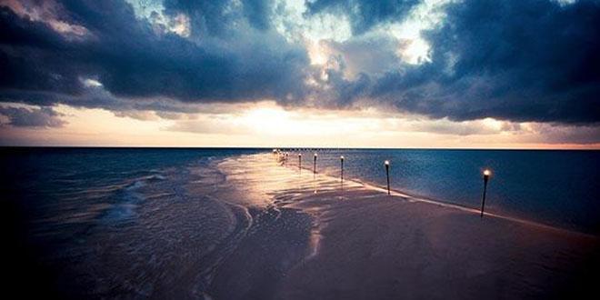 Musha Cay3