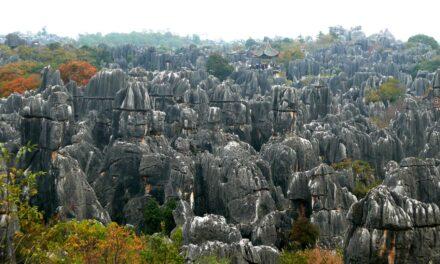 Naturaleza pétrea, el enigmático bosque de Shilin