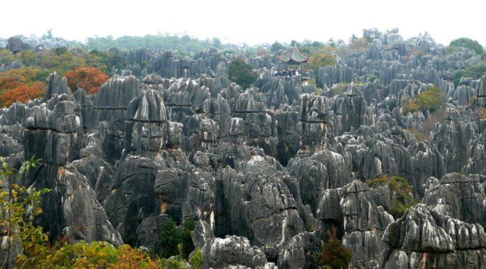 Naturaleza-pétrea-el-enigmático-bosque-de-Shilin