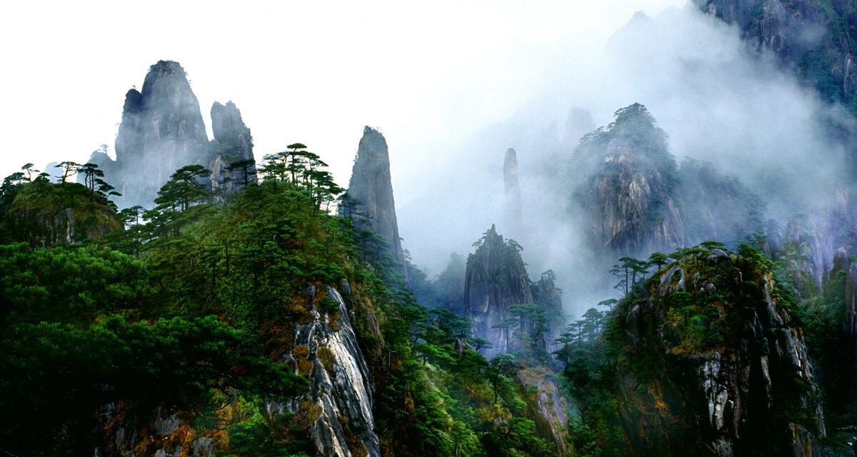 Monte Sanqingshan, el vivero de China