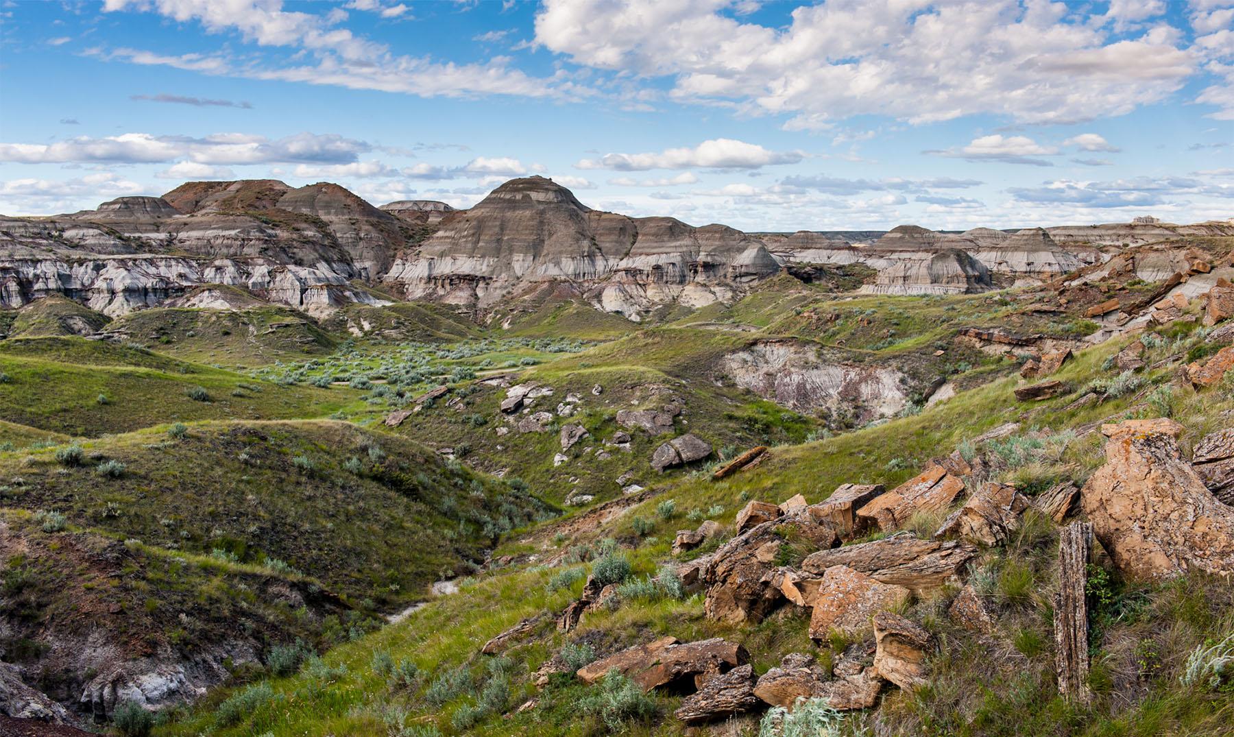 Cementerio de los dinosaurios en Canadá - El Viajero Feliz