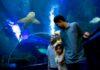 Aquaria KLCC ¿Quieres conocer el mar en pocas horas?