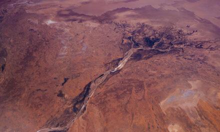 Outback, descubre un desierto insólito