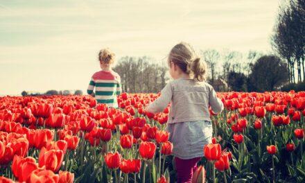 Los 3 mejores viajes de primavera