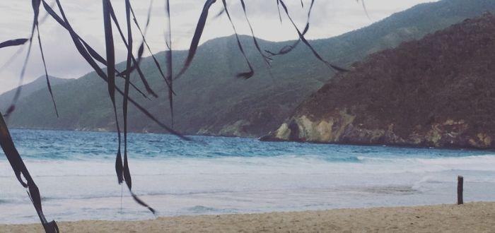 Playa Grande o playa Choroní