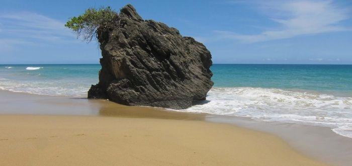 Playa de Chirimena | Playas de Venezuela