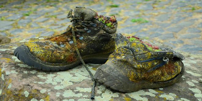 shoes-784698_1920