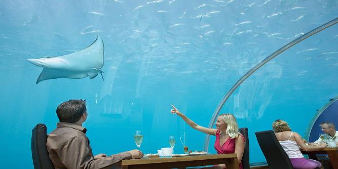 Come bajo el agua en kihabah en maldivas el viajero feliz for Maldivas hotel bajo el agua