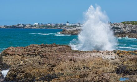 Wild Coast, la costa imponente de África