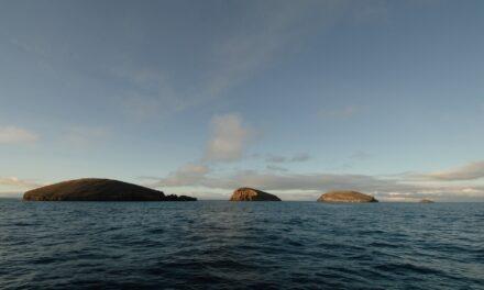 Cuándo visitar las mágicas Islas Galápagos