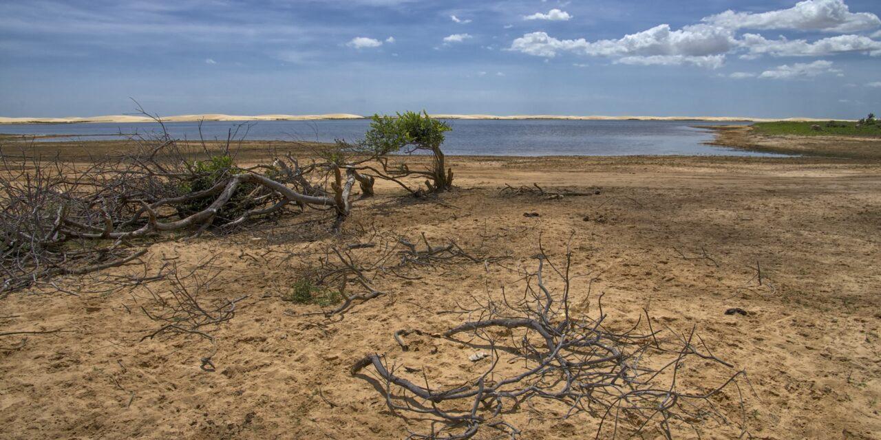 Descubre el desierto inundable de Brasil