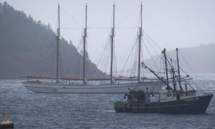 Little Gray, una isla europea en EE.UU