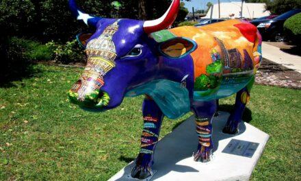 Ventspils y sus vacas de colores