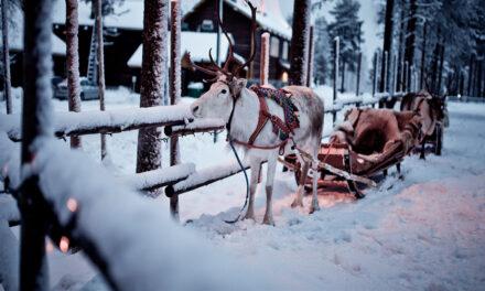 Los mejores lugares para festejar Navidad