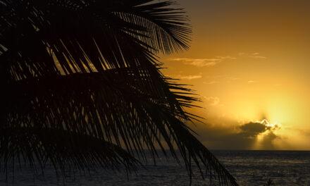 Florida: ciudades, islas y zonas naturales